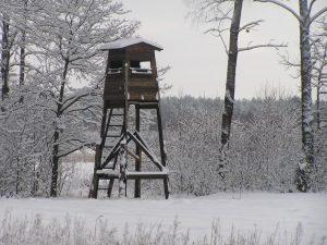 Zima w kole łowieckim